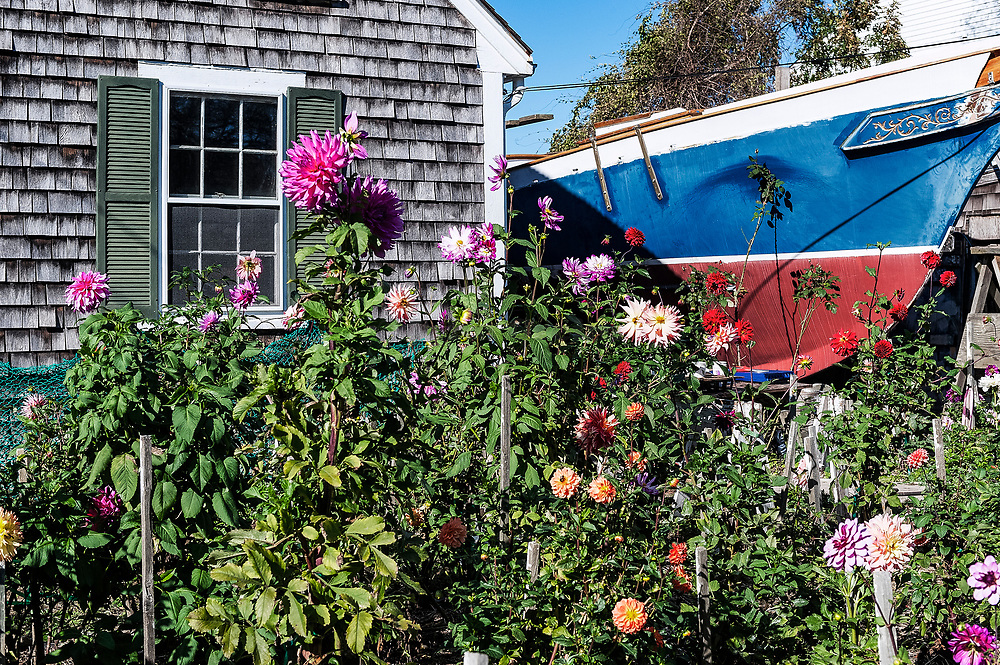 Garden with tall boat in the background, Provincetown, Cape Cod, Massachusetts, USA