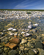 Alaska. ANWR. Itkilyariak Creek on the coastal plain within the 1002 Area.