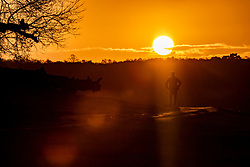 © Licensed to London News Pictures. 12/02/2020. London, UK. A man walks towards the sun in Richmond Park as the Met Office issue another weather warning for Storm Dennis with high winds and heavy rain to hit the South East again this weekend. Photo credit: Alex Lentati/LNP