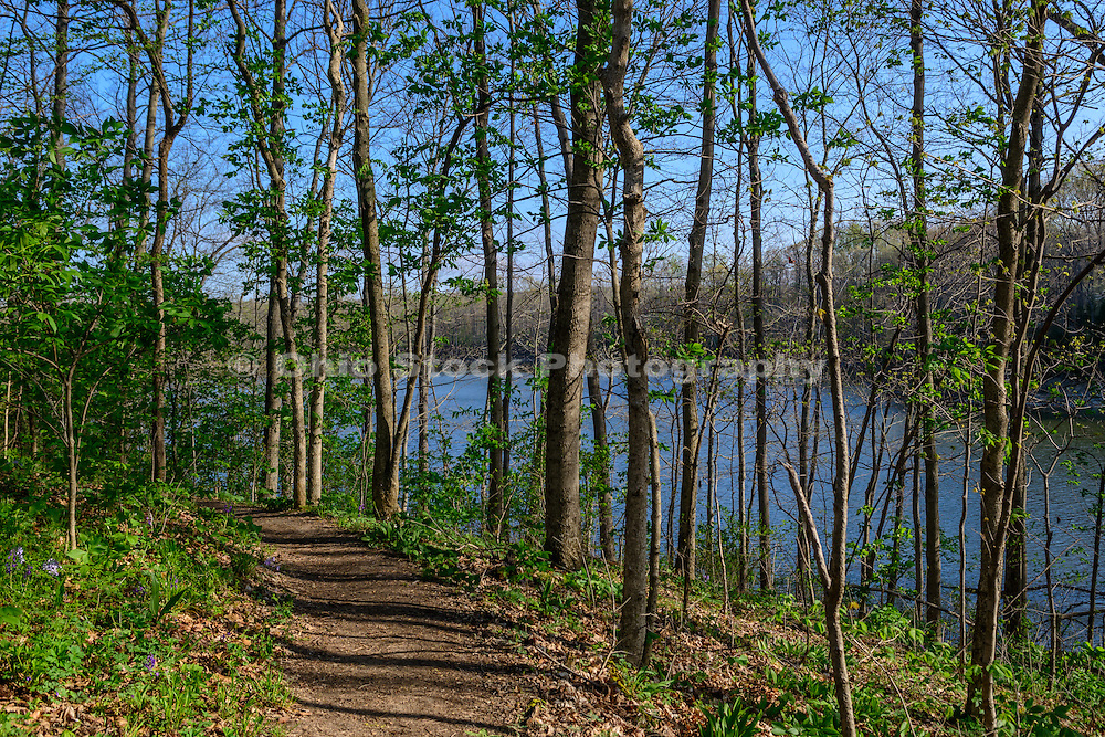 Photo of path by Caesar Creek Lake in Caesar Creek State Park, near Waynesville, Ohio, in Warren County.