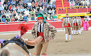 BEA AHBECK/NEWS-SENTINEL<br /> Aposento de Turlock's Emmanuel Peichoto grabs the first bull during the bloodless bullfight during the Our Lady of Fatima Portuguese Festival in Thornton Saturday, Oct. 15, 2016.