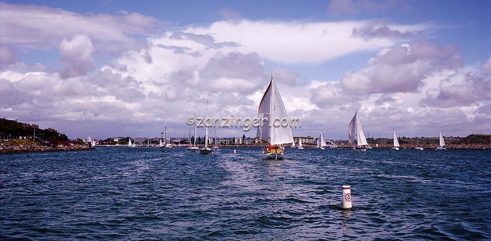 Sailing, Marina Del Rey, Ca, Southern California, Santa Monica Bay, Panorama, SoCal, Motor Boating, Power Yachts,