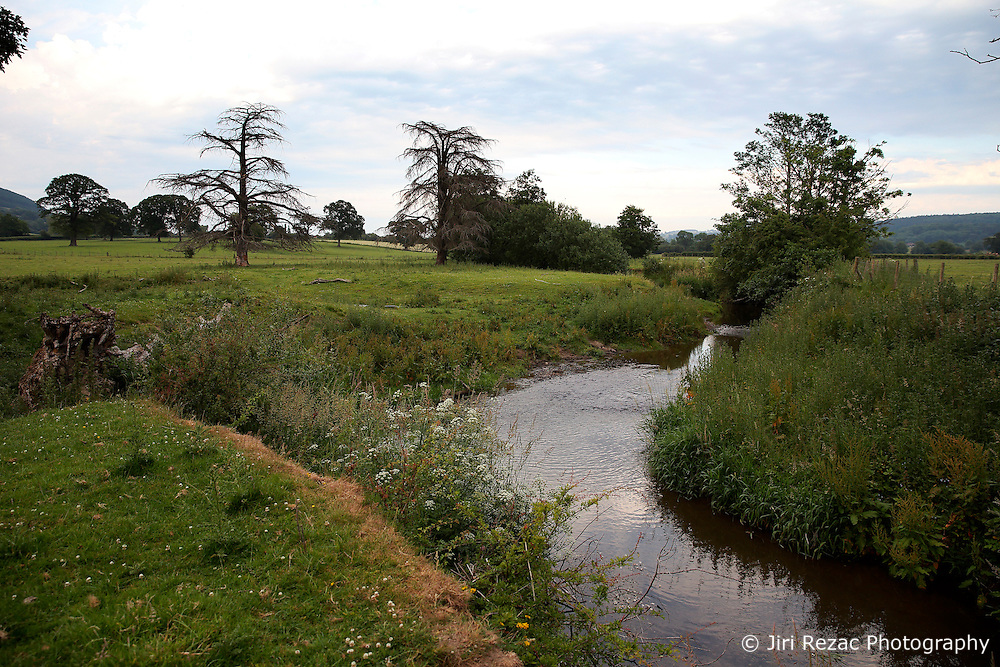 UK ENGLAND ENGLAND STOCKTON 1JUL15 - The river Camlad at Stockton Farm on the border between England and Wales in the river Severn catchment area.<br /> <br /> jre/Photo by Jiri Rezac / WWF UK<br /> <br /> © Jiri Rezac 2015