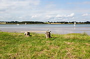 Summer landscape view of bench overlooking sailing boats on River Deben estuary, Sutton, Suffolk, England, UK