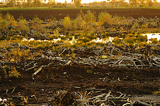 Veenwinning, Digging peat
