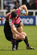 Picture by Steven Hadlow/Focus Images Leigh Halfpenny of Cardiff Blues during their Amlin Challenge Cup quarter-final match