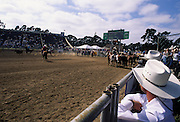 Roping, Team Roping, Tie-Down Roping, Calf Roping, Salinas Rodeo