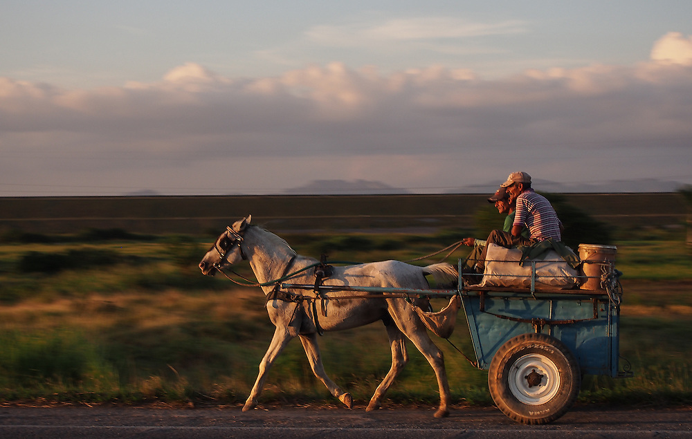 A farmer rides his horse and cart on the very empty freeway between Vinales and Havana. It is still a common sight to see horse and cart, used to ferry people and cargo in Cuba. For most people to own a car is still a dream. Travel images from Havana Cuba. Pictures by Chris Pavlich Photography.