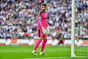 Forest Green Rovers goalkeeper Sam Russell(23) during the Vanarama National League Play Off Final match between Tranmere Rovers and Forest Green Rovers at Wembley Stadium, London, England on 14 May 2017. Photo by Adam Rivers.