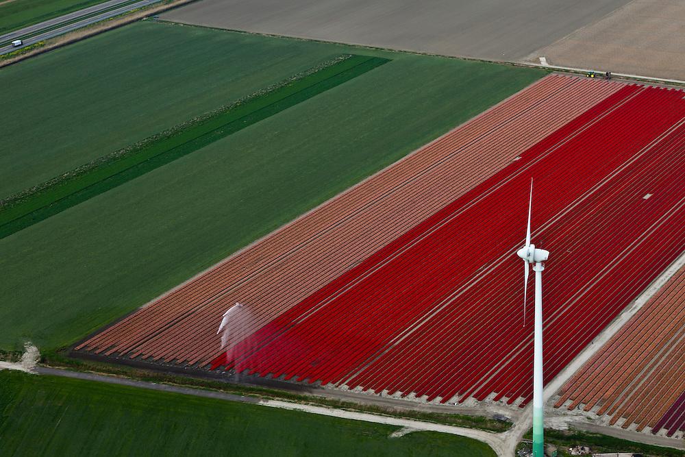 Nederland, Flevoland, Flevopolder, 28-04-2010. Windmolen, onderdeel van het windmolenpark (of windpark) van NUON omgeving van de Flevocentrale . Bloembollenvelden worden besproeid. ..Windmills, part of the wind farm (or wind park) of NUON, Noordoostpolder. Fields with flowerbulbs ar eirigated..luchtfoto (toeslag), aerial photo (additional fee required).foto/photo Siebe Swart