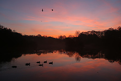 © Licensed to London News Pictures. 14/12/2016. Leeds, UK. The sun rises over the lake at Golden Acre Park on a cold winter morning in Leeds, West Yorkshire. Photo credit : Ian Hinchliffe/LNP