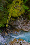 Canadian Rocky Mountains, Banff National Park, Alberta, Johnston Canyon, river
