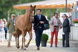 Despontin Julien, (BEL), Waldano 36<br /> First Horse Inspection <br /> CCI4* Luhmuhlen 2016 <br /> © Hippo Foto - Jon Stroud