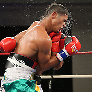 "Julio Santos (green shorts) fights against Lazar Stojadinovic during a ""Boxeo Telemundo"" boxing match at the Kissimmee Civic Center on Friday, July 18, 2014 in Kissimmee, Florida.  (AP Photo/Alex Menendez)"