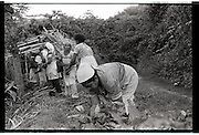 Women working on a coffee plantation on the side of a volcano in Nicaragua.