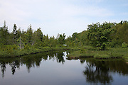 This beautiful little pond is actually a widening in the Shoepac River, near Curtis, Michigan.