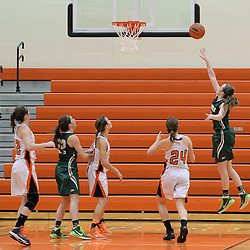 Staff photos by Tom Kelly IV<br /> Shanahan's Ciara Forde (5) goes up for a layup over Marple Newtown's Danielle Collins (24) during the Bishop Shanahan at Marple Newtown girls basketball game, during the 7th annual holiday tournament on Saturday, December 27, 2014.