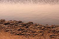 Il complesso produttivo delle saline è situato nel comune italiano di Margherita di Savoia (nome dato dagli abitanti in onore alla regina d'Italia che molto si adoperò nei confronti dei salinieri) nella provincia di Barletta-Andria-Trani in Puglia. Sono le più grandi d'Europa e le seconde nel mondo, in grado di produrre circa la metà del sale marino nazionale (500.000 di tonnellate annue).All'interno dei suoi bacini si sono insediate popolazioni di uccelli migratori e non, divenuti stanziali quali il fenicottero rosa, airone cenerino, garzetta, avocetta, cavaliere d'Italia, chiurlo, chiurlotello, fischione, volpoca..Formazioni di sale sulla riva di un canale .