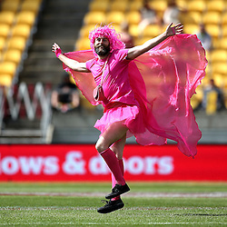 Entertainment from the 2017 HSBC World Sevens Series Wellington day two at Westpac Stadium in Wellington, New Zealand on Sunday, 29 January 2017. Photo: Martin Hunter / lintottphoto.co.nz
