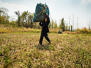 31 MARCH 2016 - NA SAK, LAMPANG, THAILAND: A farmer harvests rice straw for his water buffalo near the Mae Chang Reservoir in Lampang. The farmer said he is feeding his water buffalo more rice straw than he ever has before because the drought in Thailand is killing the pasture grass. He said he has never seen the area so dry and is worried that if it doesn't start raining soon he won't be able to take care of his animals. Thailand is in the midst of a crippling drought that is hurting agricultural production, and forcing communities to truck water because wells and reservoirs are running dry.    PHOTO BY JACK KURTZ