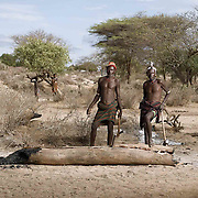 Hamer men split the trunk of a tree to make a trough for goats and cattle to drink from.