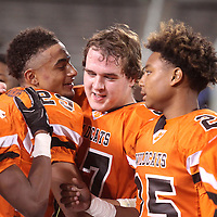 Adam Robison   BUY AT PHOTOS.DJOURNAL.COM<br /> Calhoun City teammates celebrate after a 22-8 win over Bay Springs to win the MHSAA Class 2A Football State Championship Friday in Starkville.
