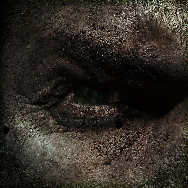 A close up of a mans eye