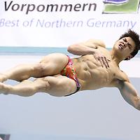 DIVE: Springertag Rostock - FINA Diving Grand Prix 2016 - Friday