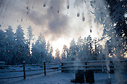Hot water thrown up into the air and transforming immediately in a temperature of minus 57 degrees into ice and fog close to the village of Tomtor at the Pole of Cold. Tomtor, Jakutien, Yakutia, Russian Federation, Russia, RUS, 19.01.2010