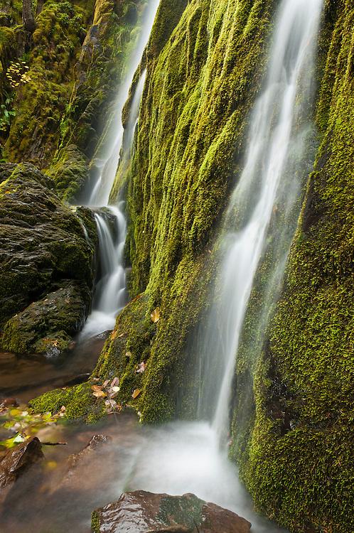 Moon Falls; Umpqua National Forest, Cascade Mountains, Oregon.