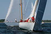 Wild Horses sailing in the Herreshoff Classic Yacht Regatta.