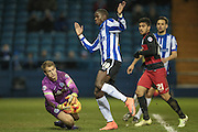 Alex Smithies (QPR) makes the save as Lucas Joao (Sheffield Wednesday) tries to get to the ball during the Sky Bet Championship match between Sheffield Wednesday and Queens Park Rangers at Hillsborough, Sheffield, England on 23 February 2016. Photo by Mark P Doherty.