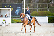 Stephanie de Frel - Beach Boy<br /> CDI Zeeland Outdoor 2017<br /> © DigiShots