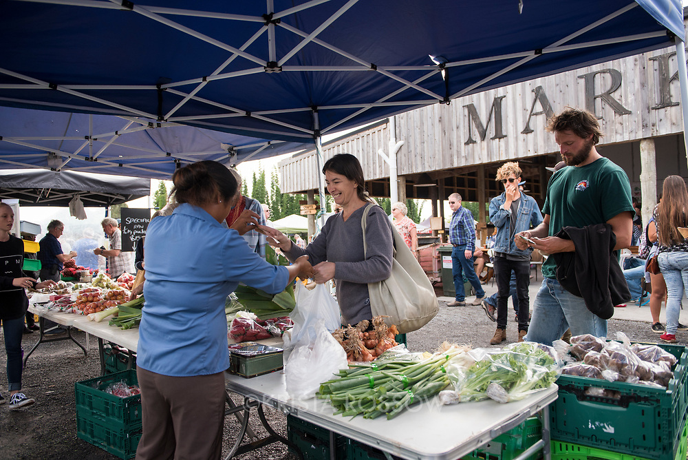 """Kericorn"" stand from Waipapa grows primarily spray-free vegetables. The Old Packhouse Market is a popular weekly event on Saturdays in Kerikeri, Northland, New Zealand."