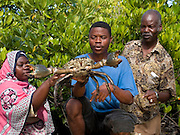 Mfaume Mohammed (middle) and Sada Juma (left) inspect a crab farmed with the guidance of Kenyan VSO volunteer Maurice Kwame Nyambok (pictured right). This crab fattening project will give the local village community a chance to access the tourism market on Zanzibar, Tanzania.  Currently Zanzibars hotels import 80 % of their produce and so opening up the market to the locals will help generate a vital income