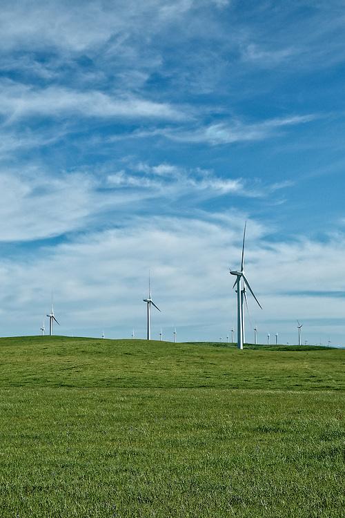 A Wind Farm in the Montezuma Hills of Solano County | April 16, 2014