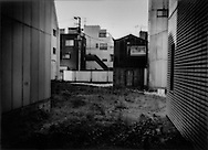 Overgrown vacant lot in central Tokyo, Japan.  Land prices have been so high in Tokyo that to leave land vacant was exceeedingly rare.  Now in a time of financial hard times, it has become a common sight.