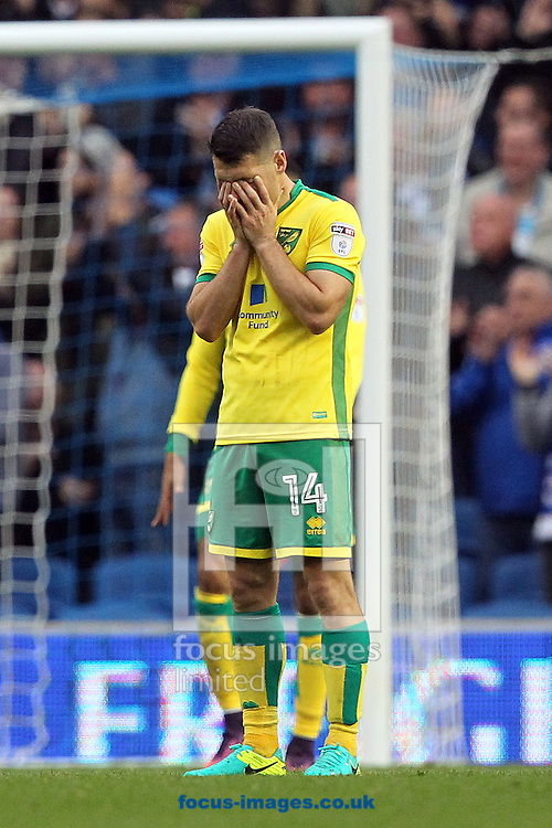 Wes Hoolahan of Norwich looks dejected after his side concedes a 2nd goal during the Sky Bet Championship match at the American Express Community Stadium, Brighton and Hove<br /> Picture by Paul Chesterton/Focus Images Ltd +44 7904 640267<br /> 29/10/2016
