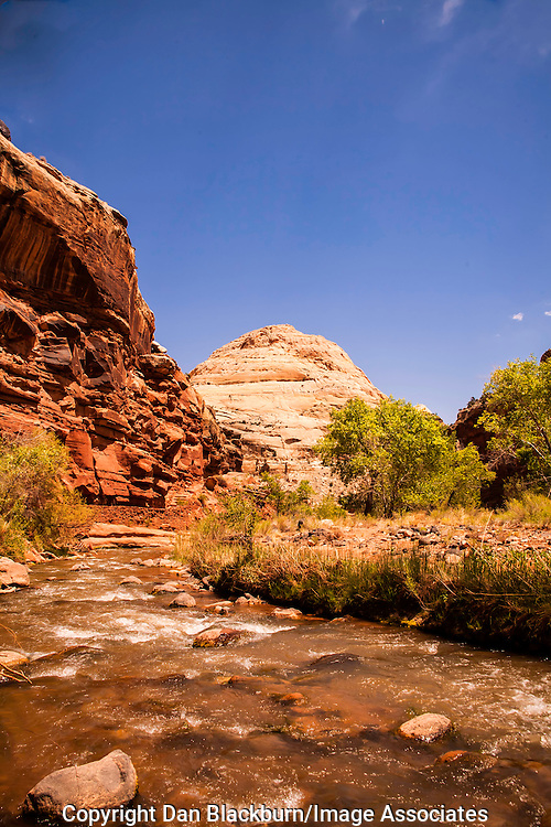 Capitol Dome and the Fremont River -- Two Major Landmarks in Capitol Reef National Park Utah