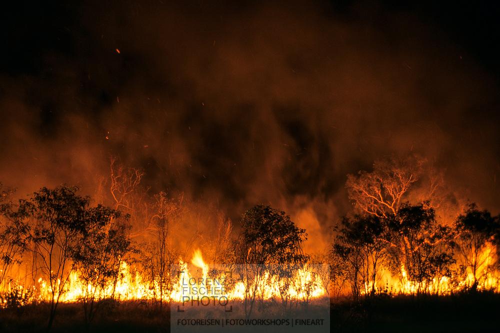 Buschbrrand im Westen von Australien<br /> <br /> Buschfire in Western Australia