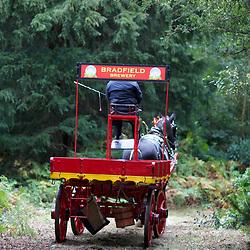 Osberton Working Horse Festival 2017