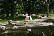 Woman Beside a Tree Trunk Laughing
