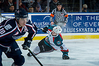 KELOWNA, CANADA - JANUARY 3:Jack Cowell #8 of the Kelowna Rockets falls to the ice during first period against the Tri-City Americans on January 3, 2017 at Prospera Place in Kelowna, British Columbia, Canada.  (Photo by Marissa Baecker/Shoot the Breeze)  *** Local Caption ***