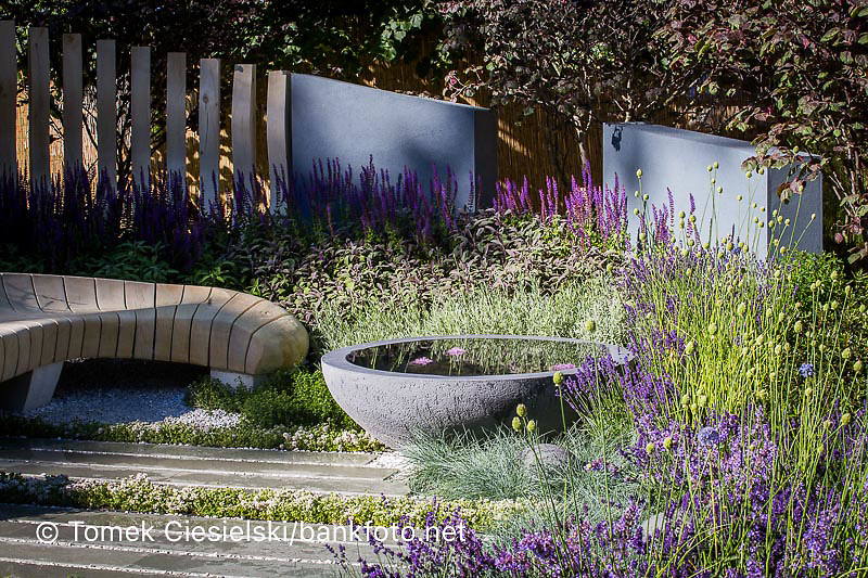View of concrete circular water feature and grey stone slabs surrounded by Festuca glauca