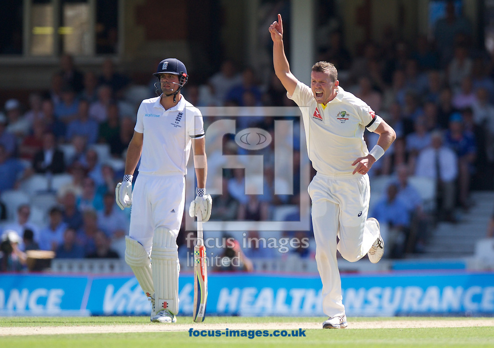 Bowler Peter Siddle of Australia celebrates taking the wicket of Adam Lyth of England while Captain Alastair Cook of England looks on during the 5th Investec Ashes Test Match match at the Kia Oval, London<br /> Picture by Alan Stanford/Focus Images Ltd +44 7915 056117<br /> 22/08/2015