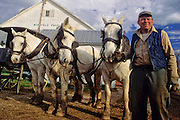CHARLIE AND HIS FELLAS--Charles Shriver of New Windsor has finished hitching up his team of Percheron draft horses as the four head out for more spring plowing.  Shriver is the last Carroll County farmer to use draft horses.