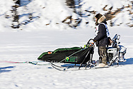 Musher Dave Branholm competing in the 45rd Iditarod Trail Sled Dog Race on the Chena River after leaving the restart in Fairbanks in Interior Alaska.  Afternoon. Winter.