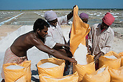 salt ,mining ,india ,fields,workers,horizontal ,sky,color,