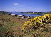 British Rail Class 37 diesel is seen here near connel, Loch Etive, Argyll 1980's