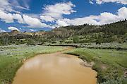Hell Creek Montana